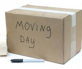 Qualities of Movers in Toronto You Should See
