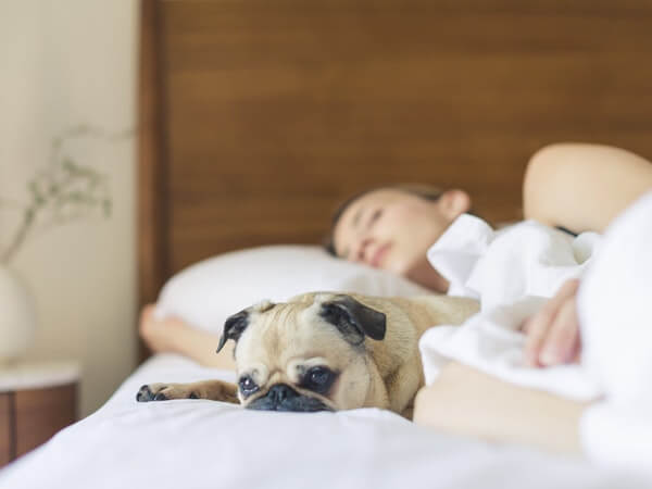 Lady sleeping in her bedroom with a cute dog